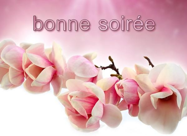 BONNE SOIRÉ DU LUNDI 16 JUIN 3482530a-44e69b9