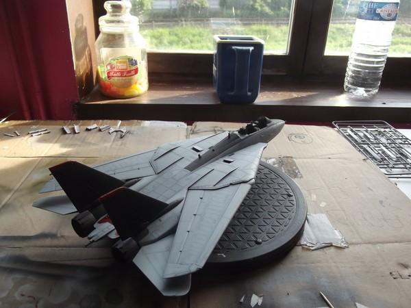 F14D super tomcat Dscf6071-45788ac
