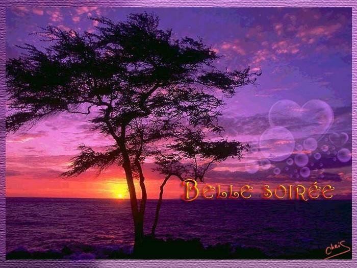 BONNE SOIREE de VENDREDI ! K0hdc3yb-44954f2